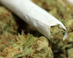 Legalize It! Possessing Small Amounts of Ganja in Jamaica is Not Criminal